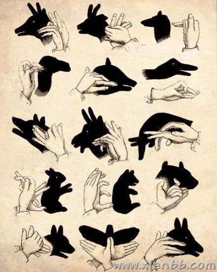 起,用双手做出各种动物造型的影子,我们玩的咯咯笑,这个游戏有趣图片